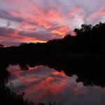 Salado Creek Sunset