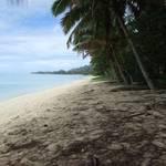 Along the Beach #2