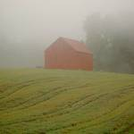 Barn in Mist