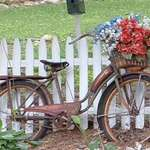 50's bike