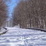 Blue Ridge Parkway in Snow