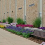 Campus benches