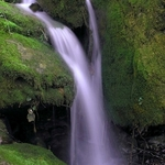 Mossy Cascade