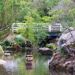 Country Bridge II