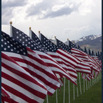 Row of Flags