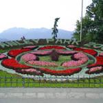 Floral Emblem, Stanley Park, Vancouver