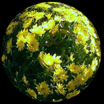 Yellow Vision Sphere
