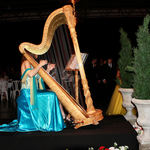 Harp Player at Prom
