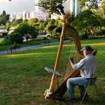 Harp Player in the Park at Sundown