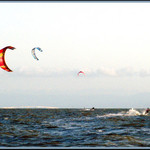 Kites on SF Bay 1