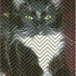 Herringbone Kitty