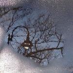 Lamplight reflection