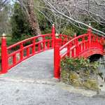 The Red Bridge