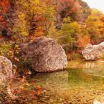 Lost Maples Autumn