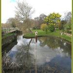 Mill Pond Alverstone