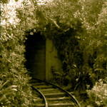 Tawhiti Museum #4