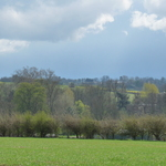 Springtime in Walkern, Hertfordshire