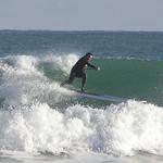 Paddleboard Surfer