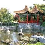 Pagoda & Pond