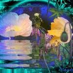 Poppy Luminance