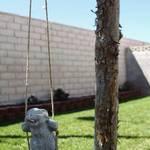 Rabbit On A Swing