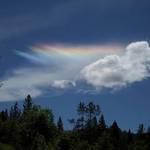 Wisp of Rainbow