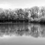 B&W Reflections