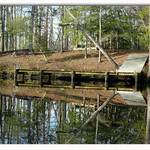 Reflections on Brice's Creek 1