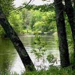 Eau Claire River_June 2004