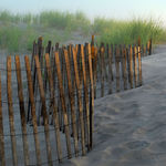 Sand dune fence
