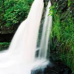 Silver Creek Falls