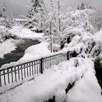 Surprise Snowfall -28 November 2006
