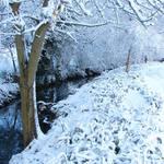 Snowy Southam