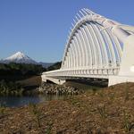 Te Rewa Rewa Bridge 1