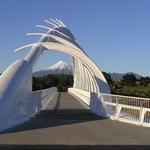 Walkway Bridge 2