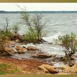 John Kerr Reservoir, Lake Gaston, Virginia