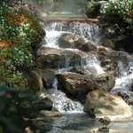 Scenic Water Fall