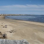 Camp Ellis Beach