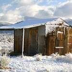 My Old Shed